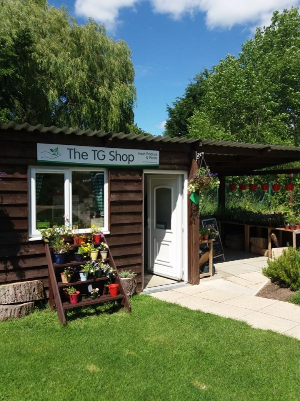 The Therapy Garden Shop - OPEN NOW to buy fresh produde and plants