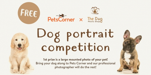 Free Dog Photo Competition - Pets Corner Crawley