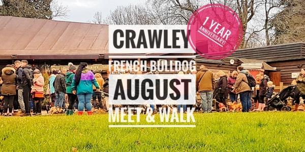 Crawley French Bulldog August Meet & Walk