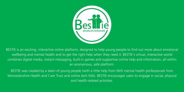 BESTIE App Worcestershire - Professionals Launch