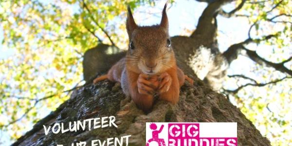 Gig Buddies Autumn Volunteer Fair @ Make
