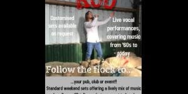 ROB    23rd March Rob Free entry   Solo singer covers all your Favourites