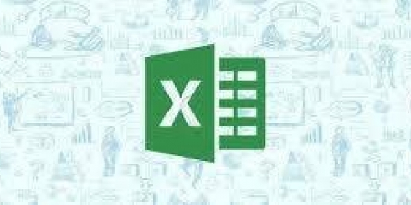 Spreadsheet Software using Microsoft Office Excel level 3