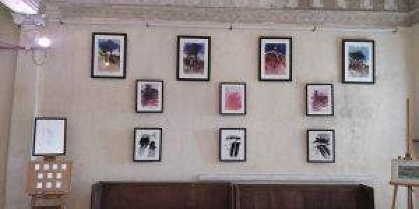 Poltimore Art 2019