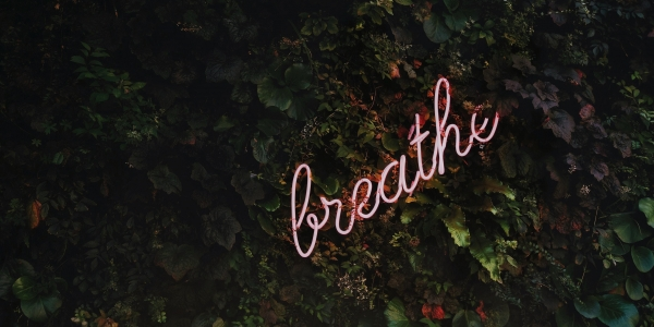 A Breath of Fresh Air (mindfulness meditation)