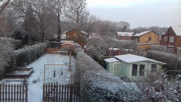 Woking Snow Angels?