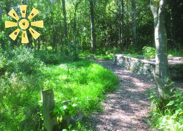 Sunday Green Gym woodland volunteering in West Lothian!
