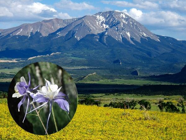 Denver Botanic Gardens and the Rocky Mountains