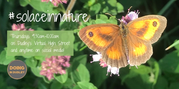 Solace in Nature | Thursdays 9.30am-10.00am
