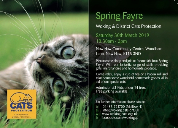 Woking Cats Protection Spring Fayre