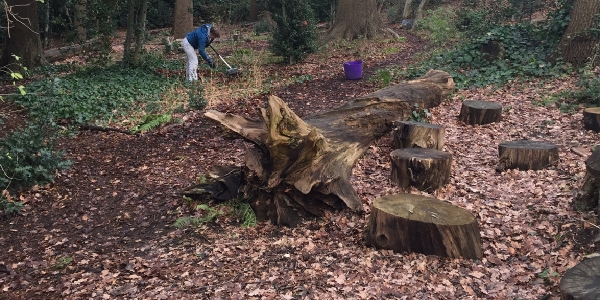 Woodlanders Working Party,  Saturday 10 March @ 9:30am