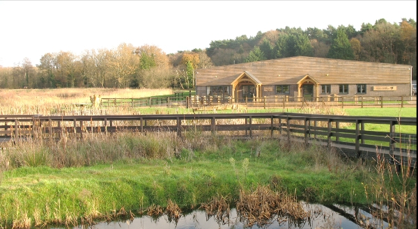 HRA AGM - Horsell Common - a talk by Rachel Woodman