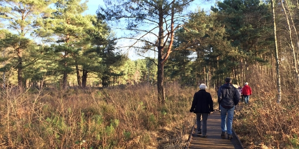 Horsell Wednesday Weekly walk -  Wednesday 30 January @ 9:50am for 10am