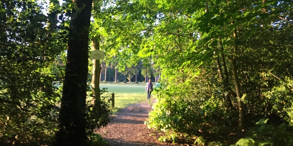 Horsell Wednesday Weekly walk - 21 August @ 9:50am for 10am