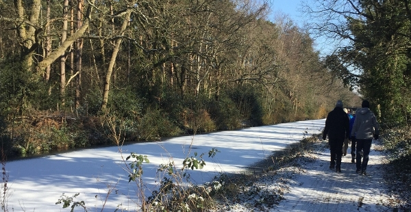 Horsell Wednesday Weekly walk - 18 December @ 9:50am for 10am