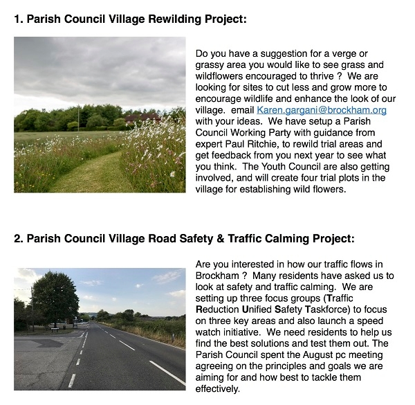 We have two Brockham Parish Council Village Projects we are looking for community help with:
