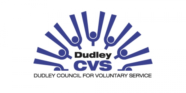 Voluntary Sector Listening and Discovery Session 31st January