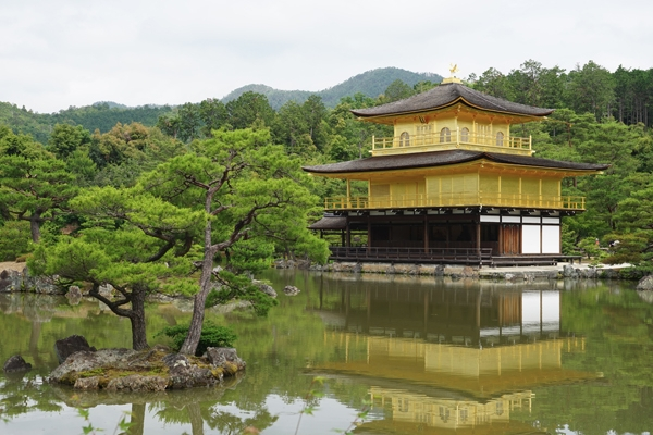 A Botanical Tour Through Japan by Martyn Denney