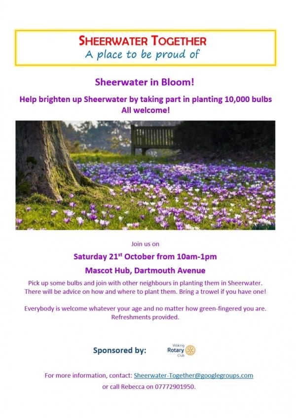 Sheerwater in Bloom
