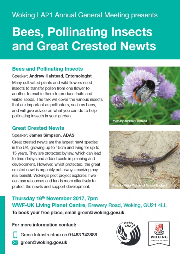 Woking LA21 AGM presents Bee, Pollinating Insects and Great Crested Newts