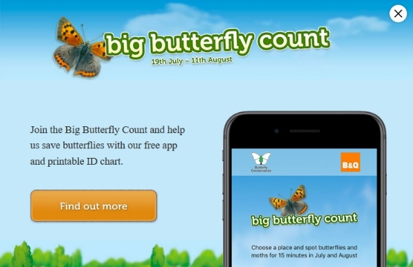 BIG BUTTERFLY COUNT: Butterflies of the National Cycle Network (Edinburgh)! *Free - booking required.