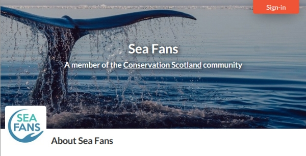 Welcoming New Member to Conservation Scotland: Sea Fans