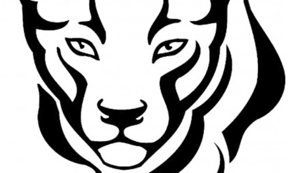 Large parker panther sm