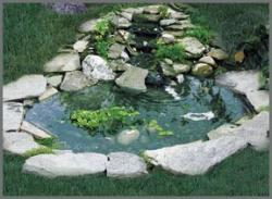Garden Pond Supplies
