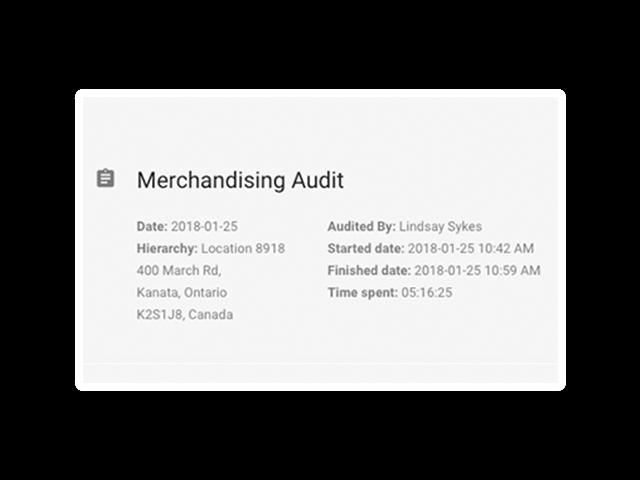 Merchandising Audit Intouchcheck