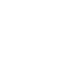 Intrinio Google+ Page icon
