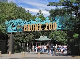 Bronx Zoo - Events Calendar http://tinyurl.com/lwtgqsq