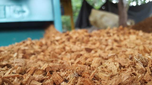 1280px coconut husk chips by coco dreams