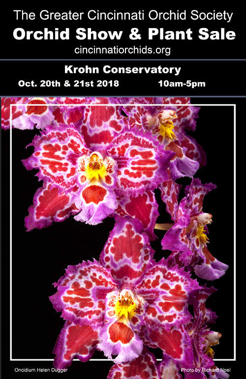 Greater cincinnati orchid society fall 2018 poster500p
