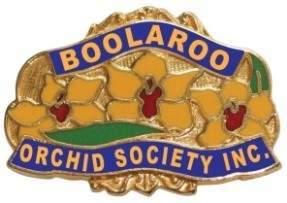 B.o.s. logo