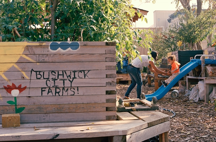 Explore an Urban Farm and Learn How to Build Your Own Home