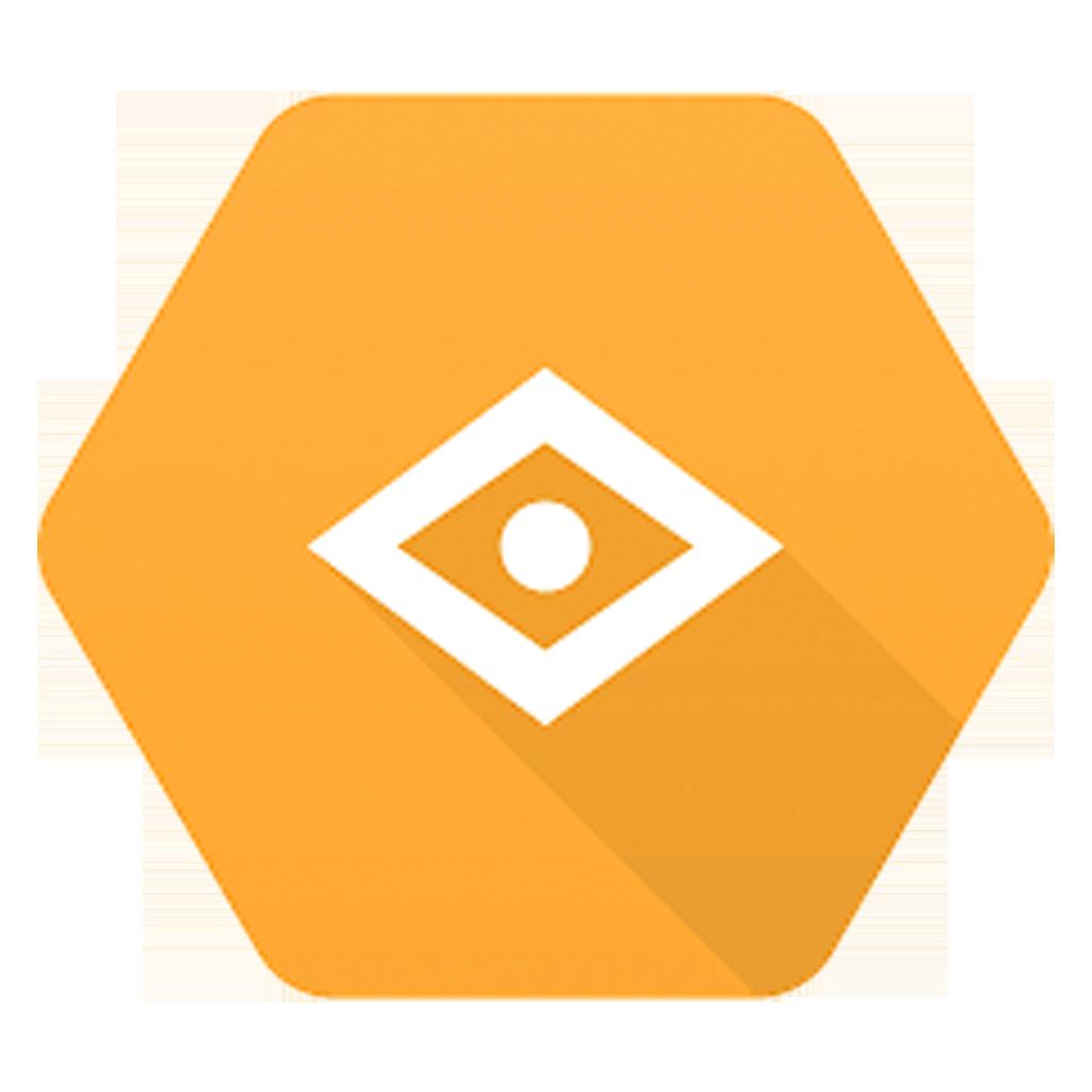Google Vision app Starter Ionic 5