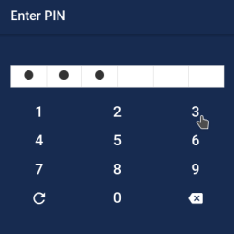 Simple Pincode Component