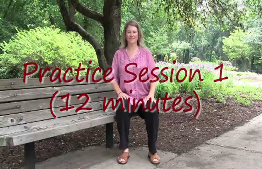 Sitting Qigong for Seniors Practice Session 1 (12 min)
