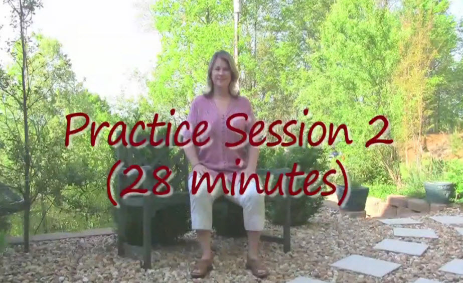 Sitting Qigong for Seniors Practice Session 2 (30 min)