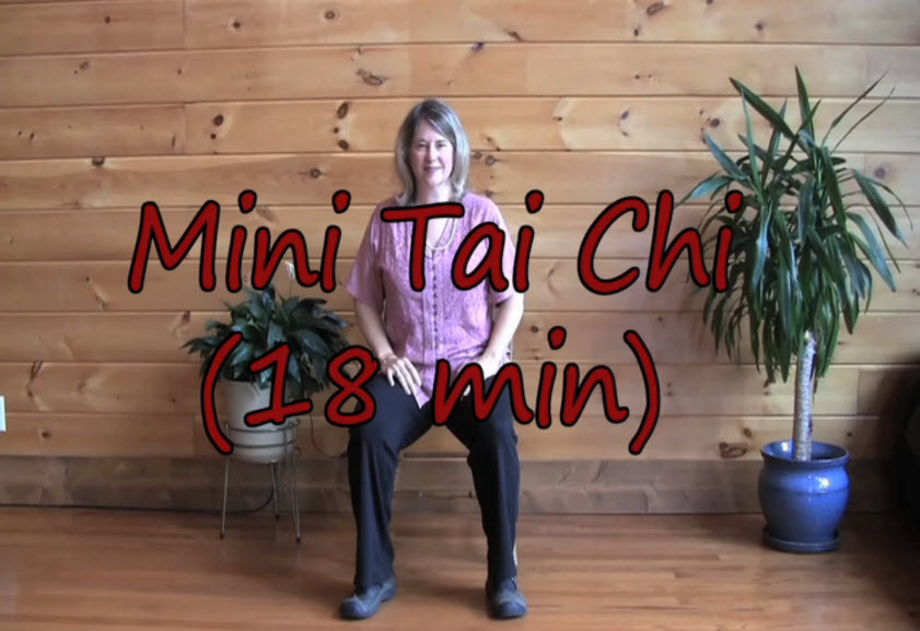 Tai Chi Movements 8 – Sitting Learn the Movements