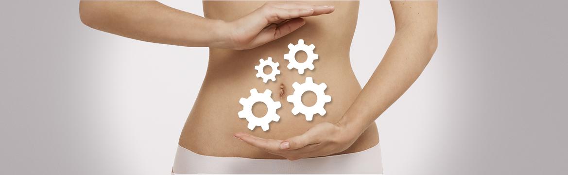 Saúde intestinal, intolerâncias alimentares e FODMAPs