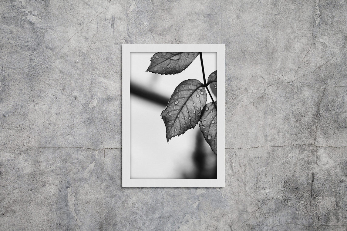 Poster Picture Frame Mockup