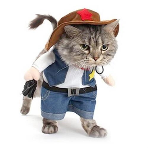 Costume da cowboy per gatto - Amazon.it af2790d68c8