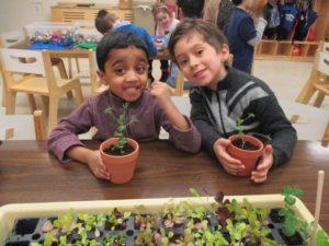 45-jr-k-planting