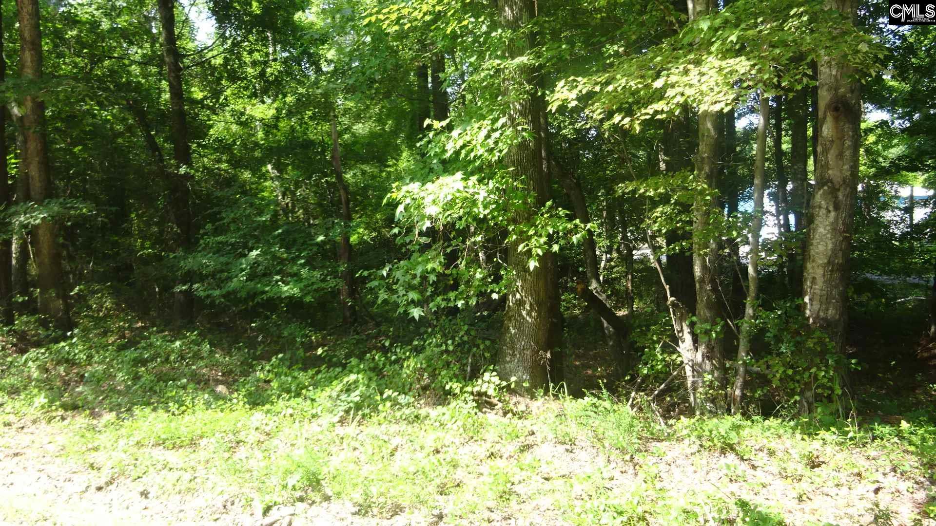 Longtown Road, Ridgeway, SC, 29130 Primary Photo