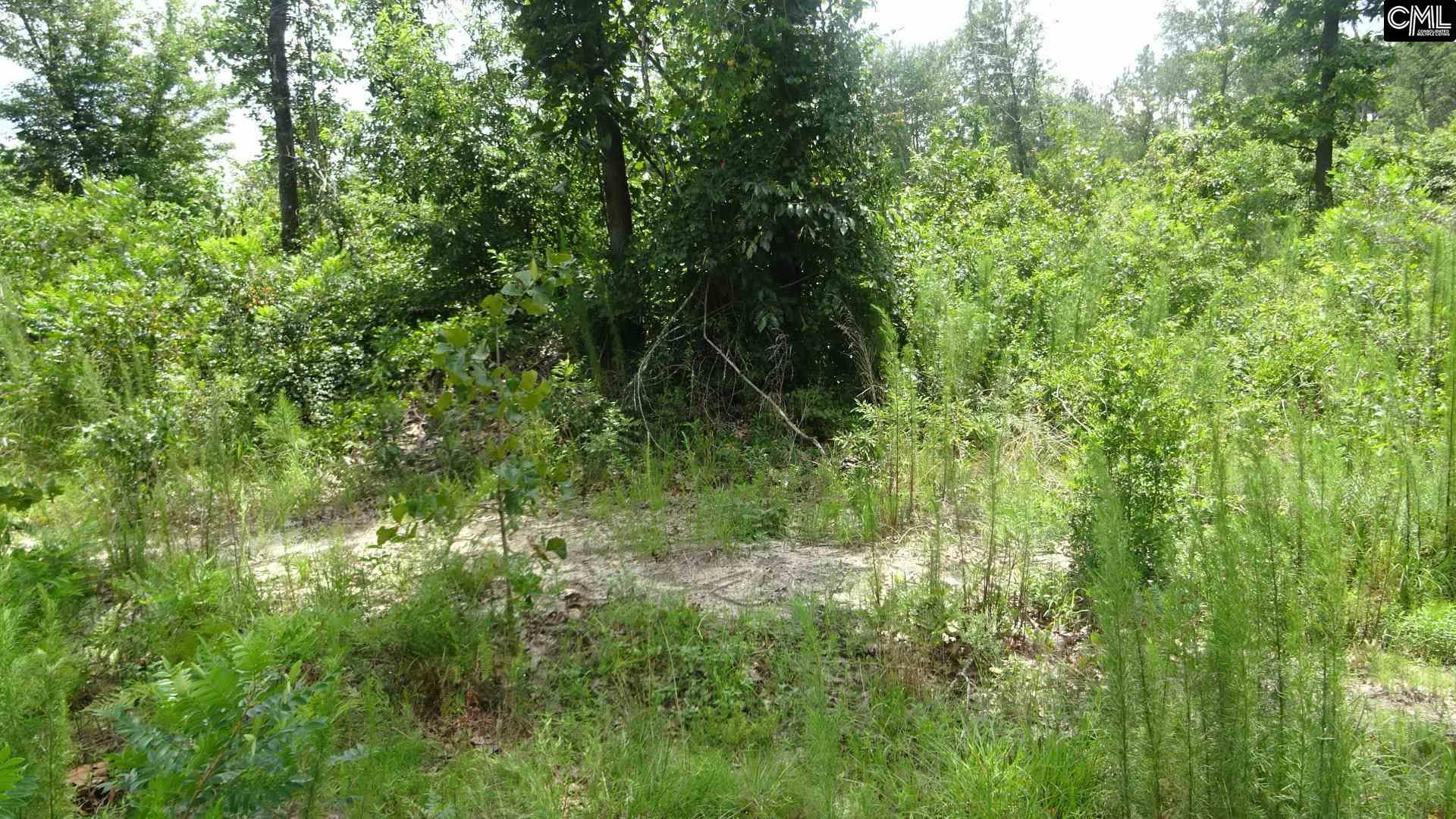 Quattlebaum Road, Leesville, SC, 29070 Primary Photo
