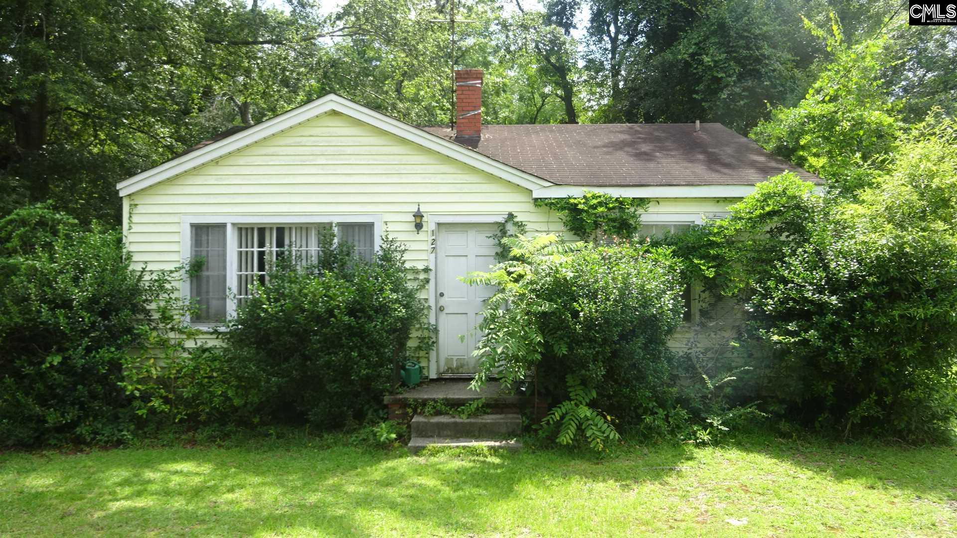127 Aiken Street, Batesburg, SC, 29006 Primary Photo