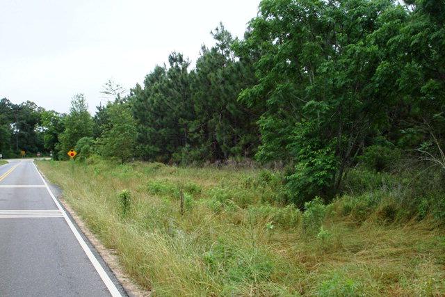 TBD County Road 41, Hartford, AL, 36344 Photo 1
