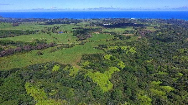 000000, Kilauea, 96754 Photo 1