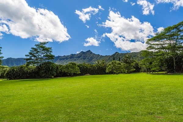 2736 HALAULANI ROAD, KILAUEA, 96754 Primary Photo